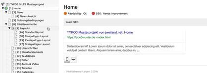 Google Snippet-Preview im Seitenmodul (Extension yoast_seo)